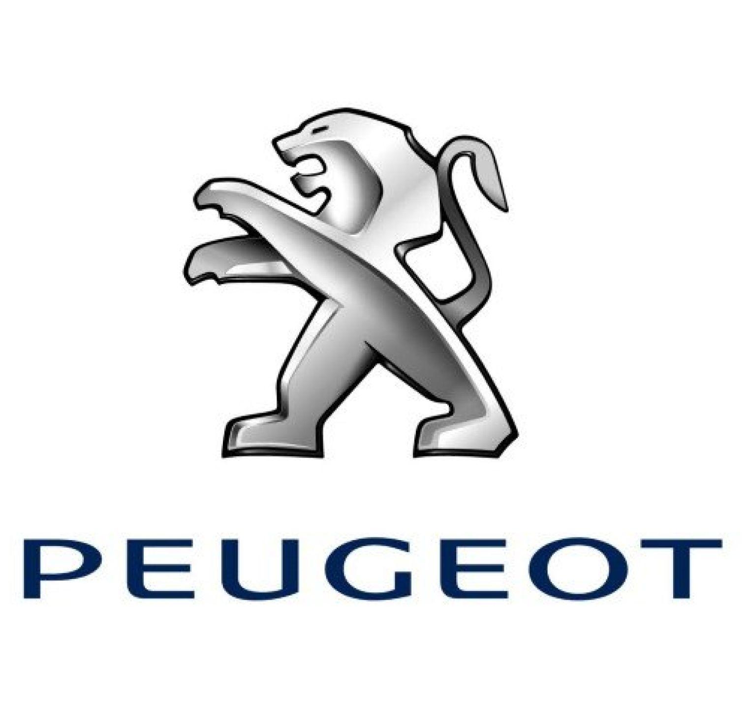Peugeot 307 (2000 t/m 2012) - set ruitenwissers Valeo Silencio flatblade